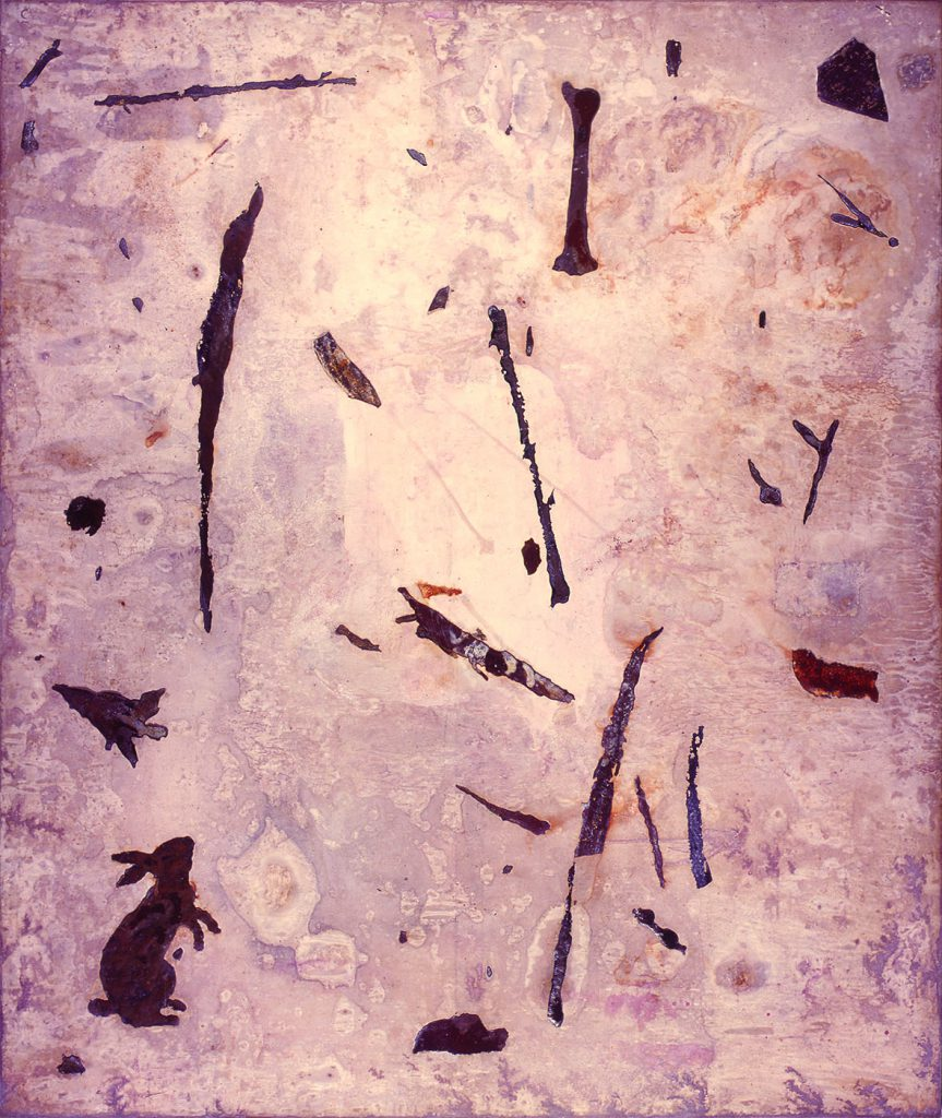 Untitled (Rabbit, bone and fragments with white background)