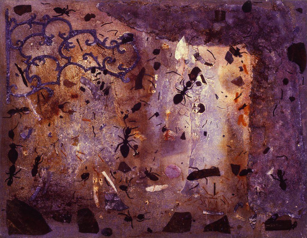 Grand Salon (Formigas e restos)